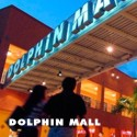 Dolphin Mall Shopping Excursion
